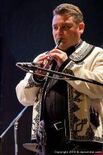 cobzality in concert