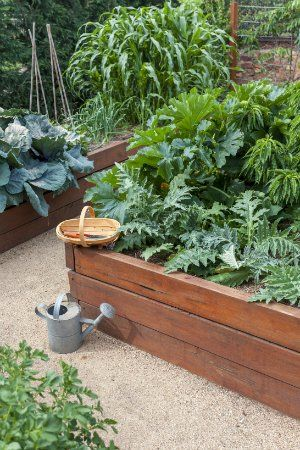 Debating whether to build a raised garden bed? For the soil- and drainage-poor gardener, a raised garden bed offers the opportunity to perfect your environment and control many factors otherwise left up to nature.