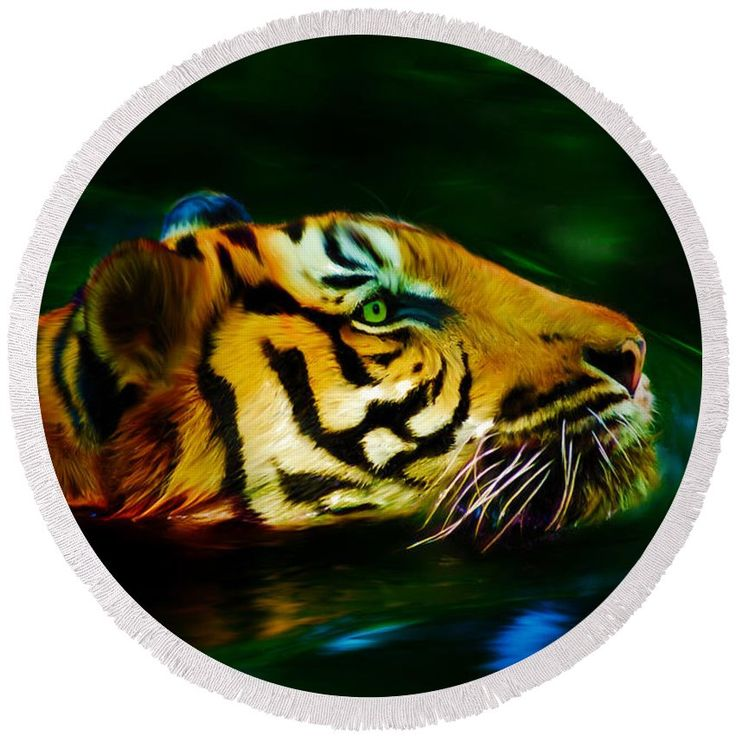 Swimming tiger round beach towel. Digital painting by Tracey Everington of Tracey Lee Art Designs