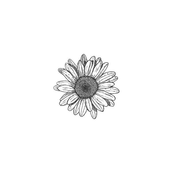 I don't know, transparent png/gif masterpost!! [[MORE]] ... ❤ liked on Polyvore featuring fillers, flowers, doodles, drawings, backgrounds, circles, text, quotes, outline and round