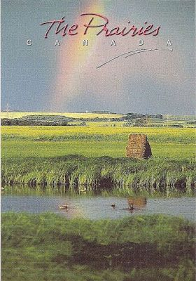 Travels with postcards around the world: THE PRAIRIES