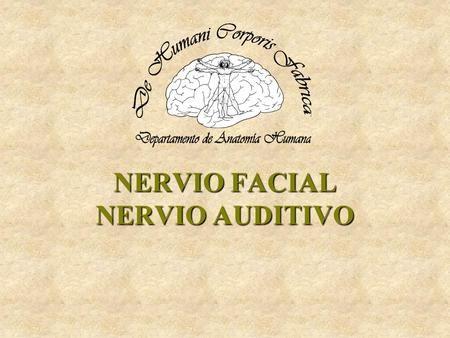 NERVIO FACIAL NERVIO AUDITIVO. NERVIO FACIAL Emerge en el borde inferior del ángulo cerebelopontino, por fuera y por arriba de la oliva, medial al nervio.