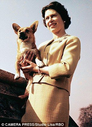 The Queen at Windsor in 1962 with one of her many corgis