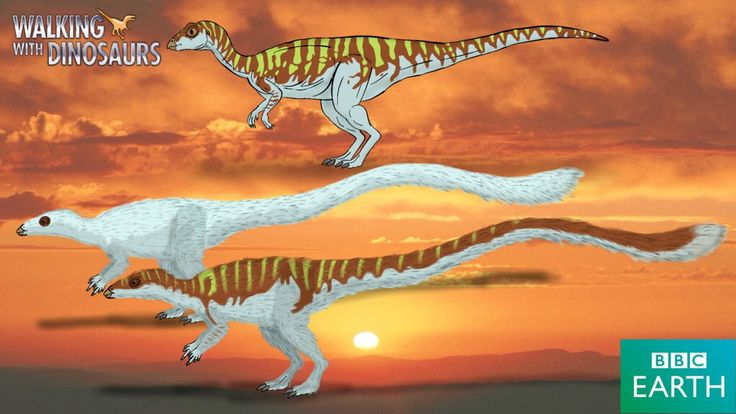 Leallynasaura amicagraphica Named by Tom and Patricia Rich, 1989 Diet: Herbivore (Plants such as ferns and horsetails) Type: Ornithopod dinosaur (Note: It remains uncertain of exactly what kind of ...