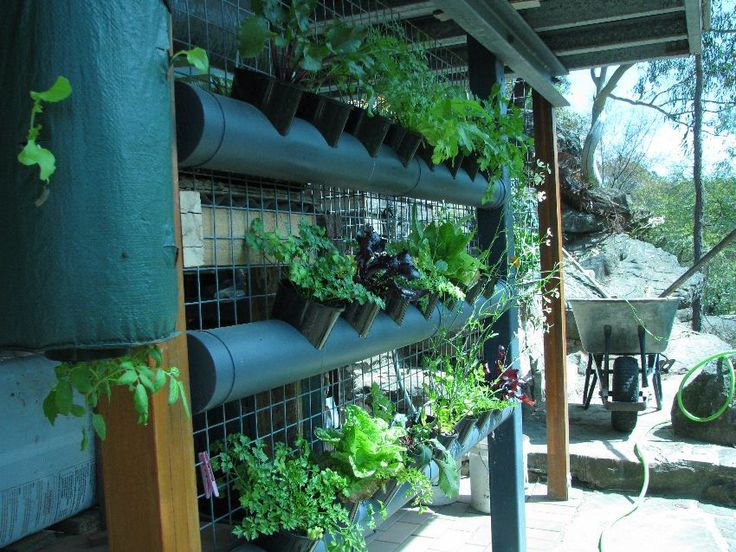 Ingredients to make a vertical gardening system
