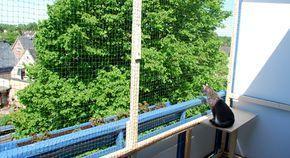 Handwerkern für einen katzensicheren Balkon! | Mias Katzenwelt