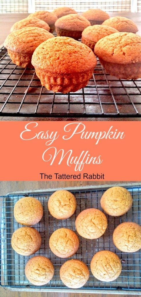 Easy Pumpkin Muffins ~ Breakfast~Snack~Fall Treat~Freezes well and can easily be…