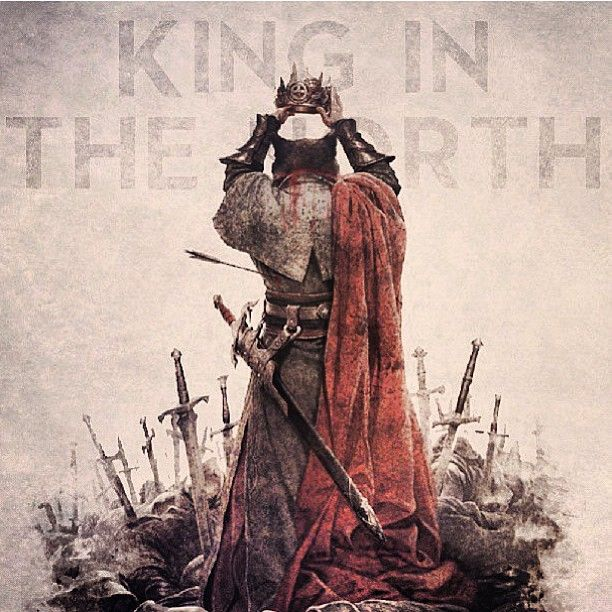 Game of thrones - King in the North! The Young Wolf Robb Stark