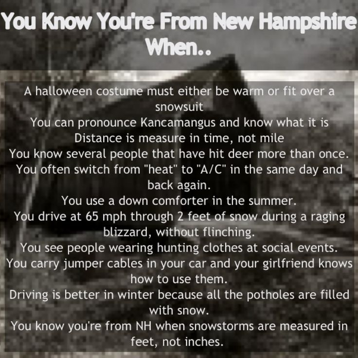 Image result for new hampshire funny