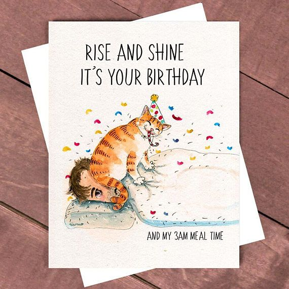 Birthday Cartoon Funny Greetings Card for Cat Lovers A6