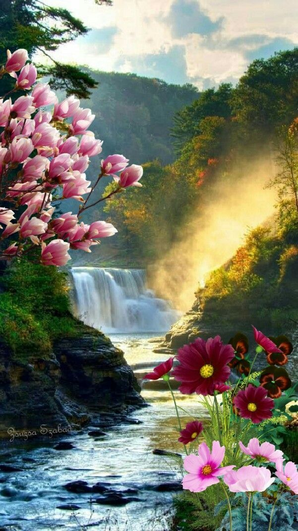 Waterfall Flowers 🌞🌼 – #paisaje # Flowers # Waterfall