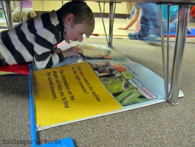 1000+ images about Alternative Seating in the Classroom on ...