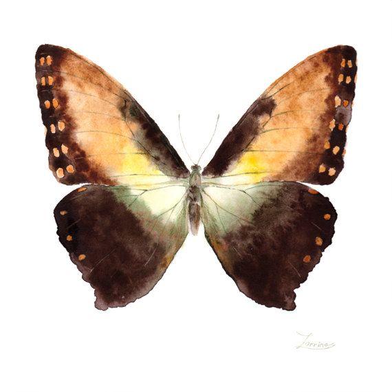 Watercolor butterfly Morpho hecuba. JPG downable and printable. Aquarelle realistic hand painting high resolution digital file by ZorrinaArt