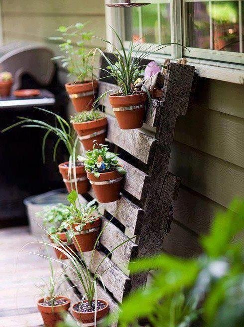 Vertical hanger for plant pots.