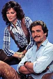 Matt Houston - (1982-85). Starring: Lee Horsley, Pamela Hensley, John Aprea, Paul Brinegar, Dennis Fimple, Penny Santon, Lincoln Kilpatrick, Buddy Ebsen and Wade Nicholson.