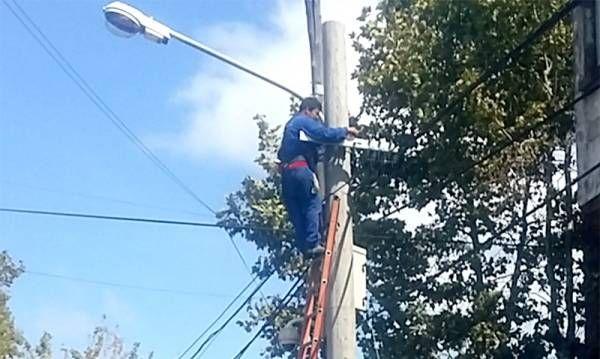 Tigre invierte en el mantenimiento de su red eléctrica