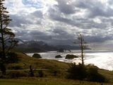 Cannon Beach Trails - Best Cannon Beach camping, hiking & biking trails | AllTrails.com