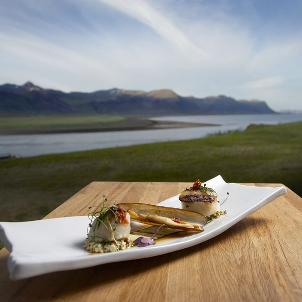 Nordic Cooking - Take a culinary tour of Iceland with Jody Eddy, a world-famous food writer and expert on Nordic Cuisine, where you'll learn how to smoke your own fish, among many other skills. When you're not having ice-cold cocktails underneath majestic waterfalls or eating lunch over a harbor while you watch fisherman come in with their catches, you'll learn about native Icelandic cuisine.