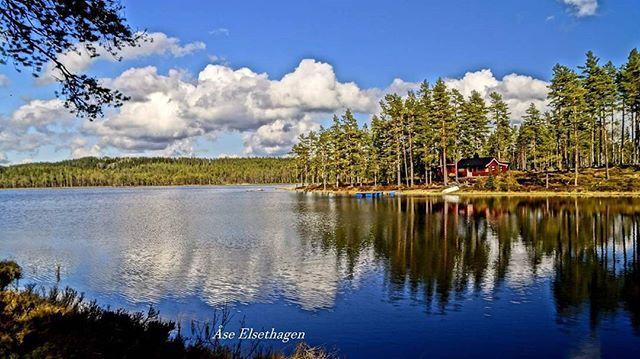 #godmorgennorge #norgerundt #eastnorway #finnskogen #follow4follow #dreamnorway #tv2storm #tv2vært #best2norway #ulbolig #visitnorway #norgerundt #eastnorway #norgesferie #nrkøstnytt #vg #friluftsliv #instagram #follow4follow #dreamnorway #forest #glåmdalen #hyttelivet #sjø #fiske #fishing #hunting
