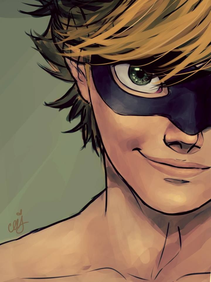 Chat noir by ceejles wow this is so well done remindes me of real comics nightwing - Chat noir dessin ...