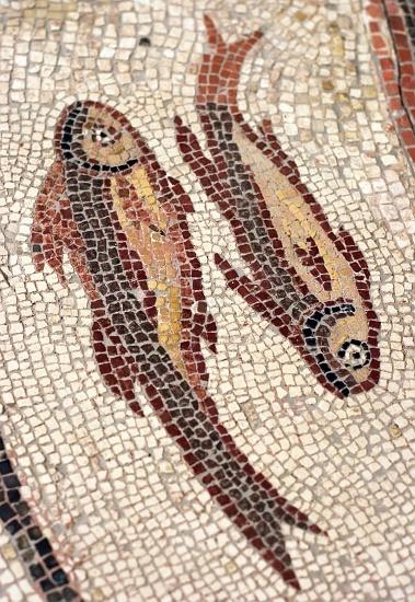 Roman Mosaic. Pisces. Münster-Sarmsheim, Germany.