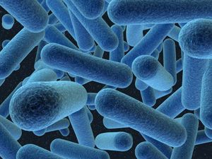 INFECTIOUS MICROORGANISMS AND CHRONIC DEGENERATIVE DISEASE -- Are infectious microorganisms the cause of just about all chronic degenerative disease?  Many cutting edge health experts think so.  See:  http://thesilveredge.com/disease.shtml#.Uyf4N_ldV8F
