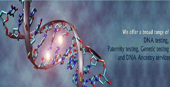 Indian Biosciences one of the most reliable DNA testing labs in India. We have best facilities for DNA Testing in India at affordable price. To know more about DNA testing prices, DNA test Labs and DNA testing labs in India visit www.inbdna.com.