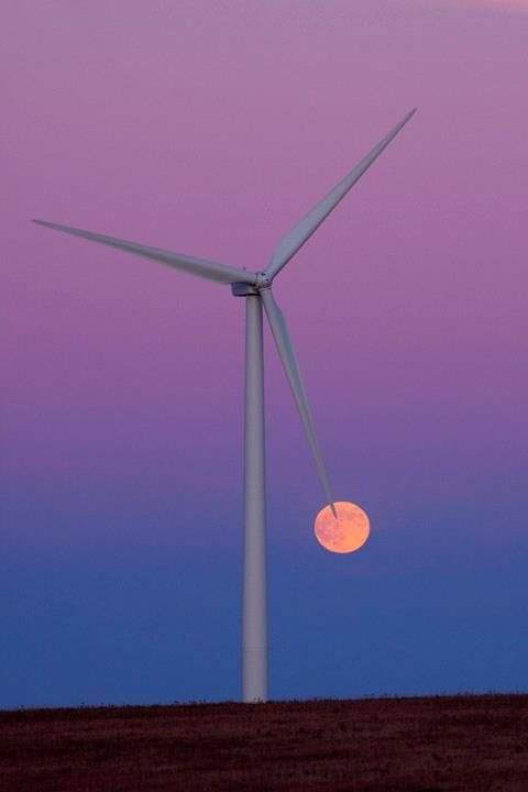 Happy Birthday, Kansas.  This is a lovely photograph of the one of many wind turbines in Kansas. www.greenCATservices.com