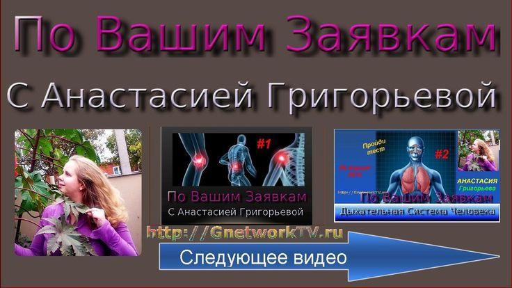 Заболевания дыхательной системы человека, Дыхательная система человека ,...