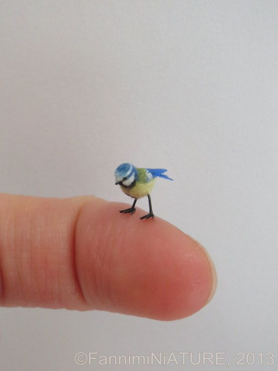 Dollhouse miniature Blue Tit - 1:12 scale - OOAK - handsculpted