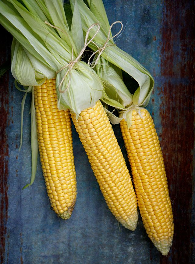 yellow, green, blue, wood, color pattern, corn,