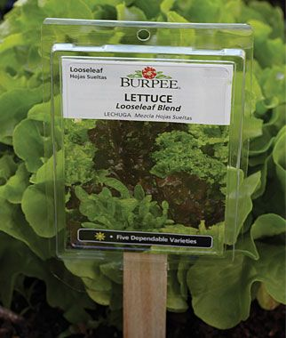 These reusable plant tags hold and empty seed packets so you'll always have plant info right at hand. via Burpee