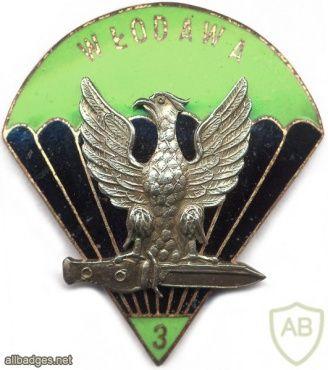 POLAND 3rd Reconnaissance Battalion pocket badge