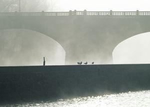 Meeting under the Bridge