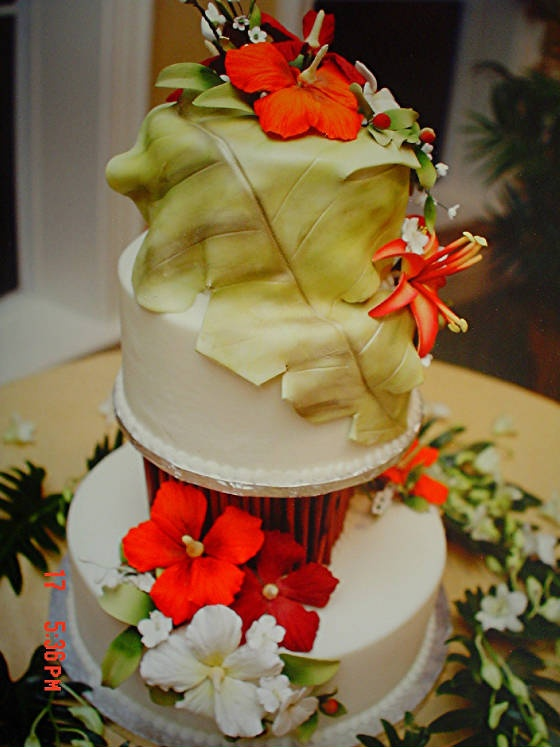 25 best tropical cake ideas images on Pinterest   Anniversary cakes ...