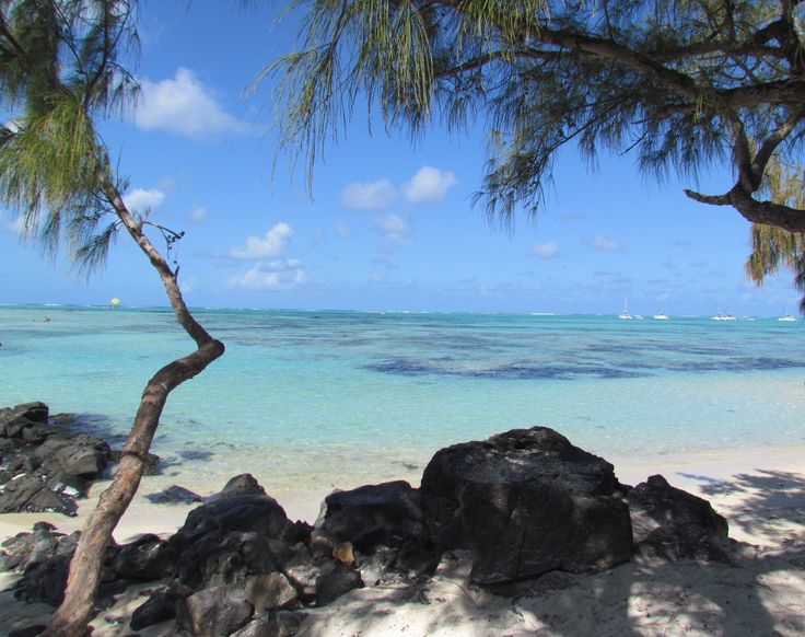 Ile aux Cerfs, Mauritius.  One of the most incredible places.  October 2014