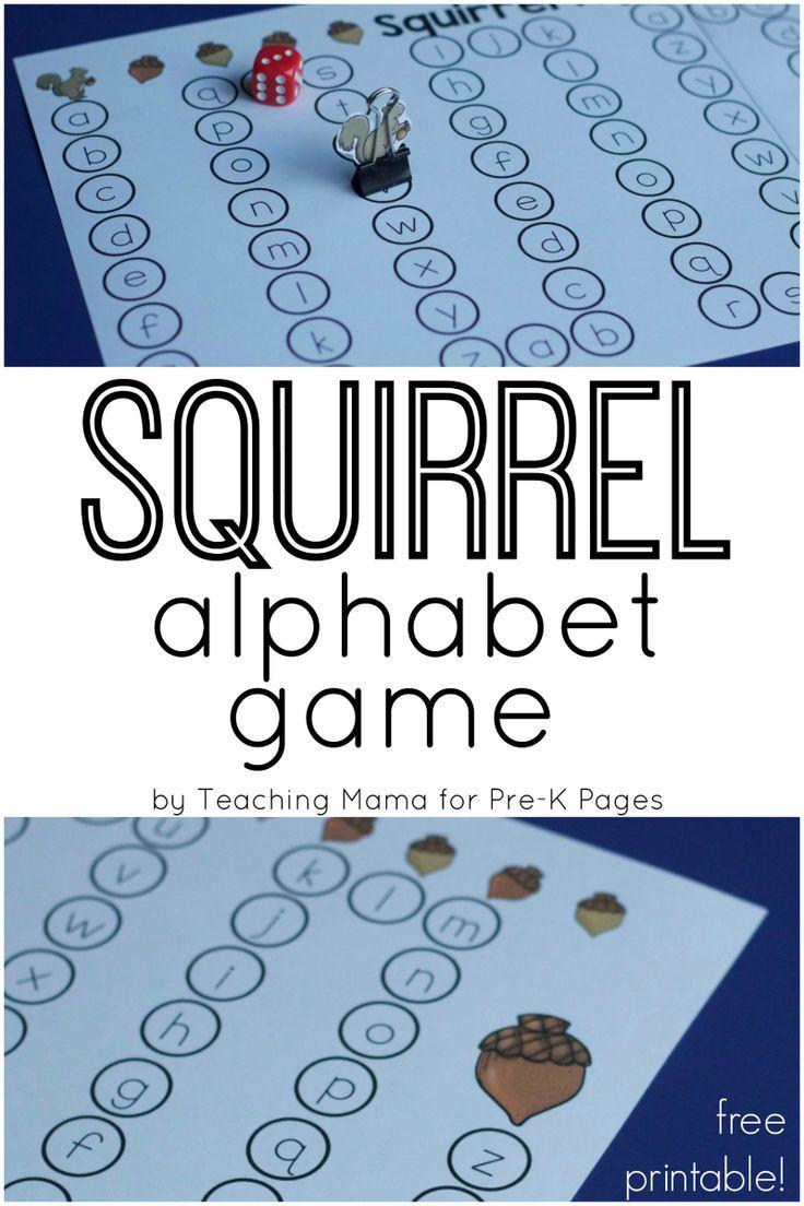 14 best Squirrels images on Pinterest | Squirrels, Animal activities ...