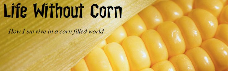 Blog with corn-free recipes and tips. Really incredible.