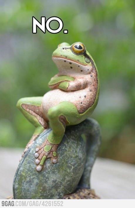 Naruto frog!