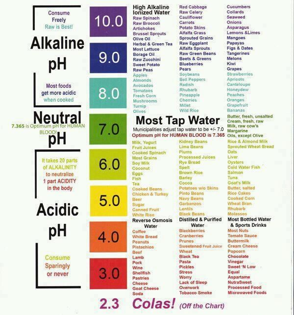 PH scale and alkalinity of foods-- Most cancer patients' bodies are more acidic-- Cancer cannot survive in an alkaline enviroment