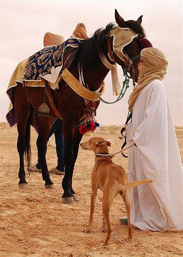 Jeune garçon avec son cheval et son lévrier à l'entrée du Sahara, Douz - Photo Bernard Grua #Tunisia #Orientalism https://www.flickr.com/photos/bernardgrua/4155578595/in/album-72157622803474827/