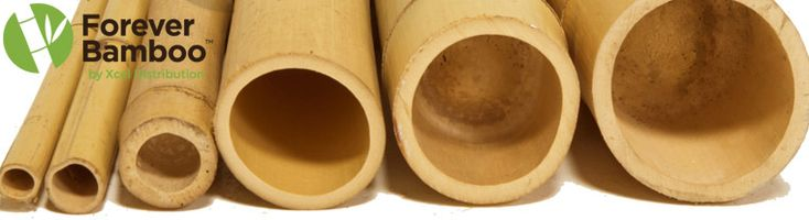 Large Bamboo Poles for your Home and Business %%|%% Bamboo Products | Thatch Products | Forever Bamboo Blog