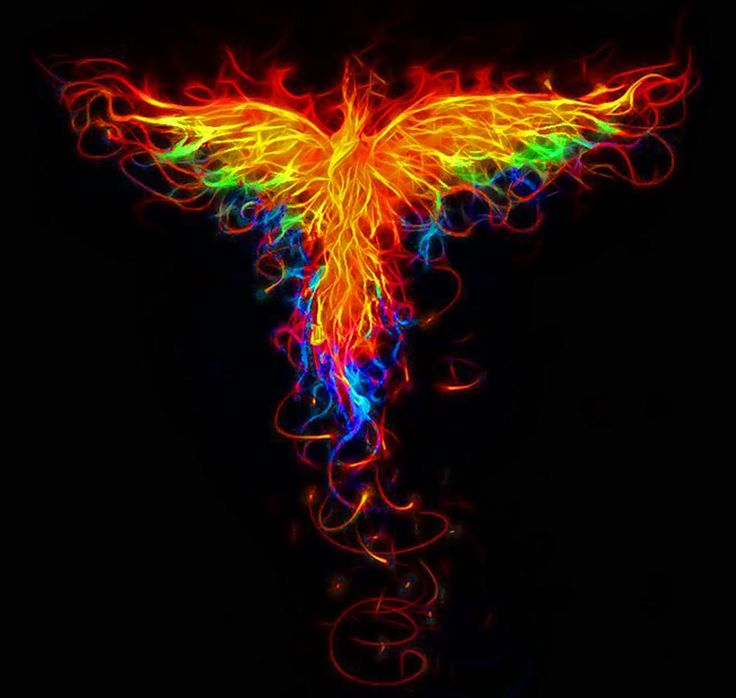 ✣...In order to rise from its own ashes, a Phoenix first must burn...  ✣ Octavia E. Butler  Image; 1dut