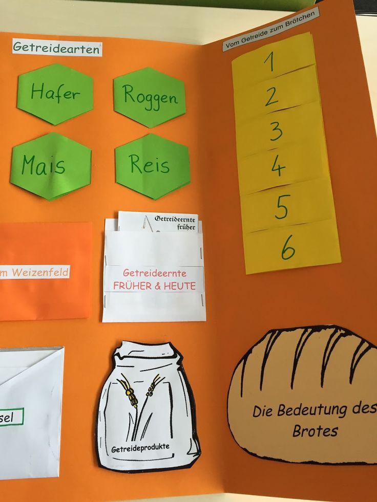 284 besten Schule SU Bilder auf Pinterest | Sachunterricht ...