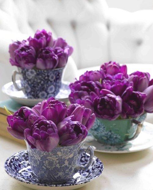 What a beautiful way to display tulips!  You can get teacups from #Goodwill and use them as a spring centerpiece!: Tea Party, Tea Time, Idea, Purple Tulip, Wedding, Flowers, Tea Cups, Teacups