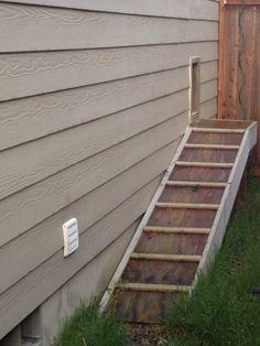 Doggie Door With Ramp Diy Ideas Pinterest Gardens