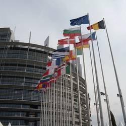 En Estrasburgo se evalúan las finanzas vaticanas
