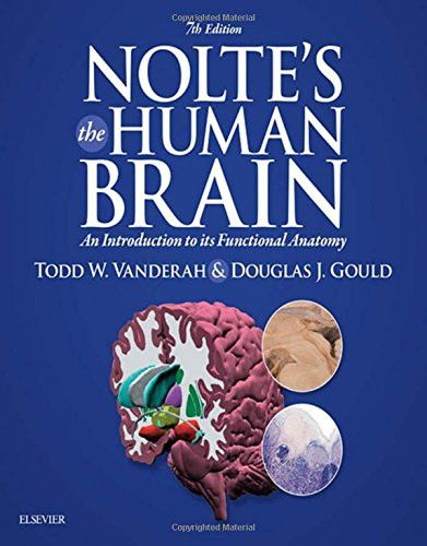 an introduction to parts of the brain Part 1 brain anatomy brain structure and neurons dna, the brain, and human behavior human brain development brain neurotransmitters an introduction brain neurotransmitters and illness emotions are hard-wired in the brain: introduction to ancestral brain systems.