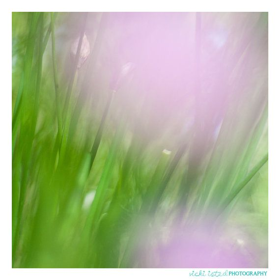 Abstract Fine Art Photography by vickiistedPHOTO on Etsy, £25.00  www.vicki-isted.co.uk