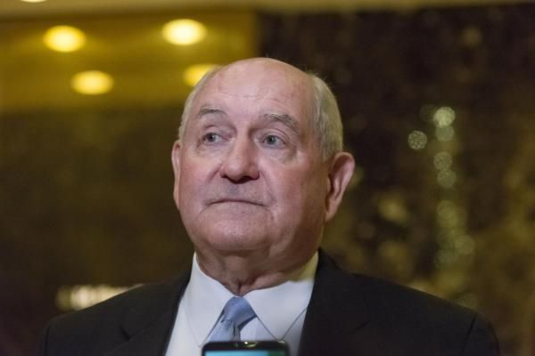 Stephen Feller Jan. 18 (UPI) -- President-elect Donald Trump is reportedly expected to nominate former Georgia Gov. Sonny Perdue as head of…